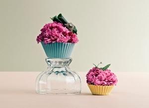Sonia Rentsch cupcake stillevens